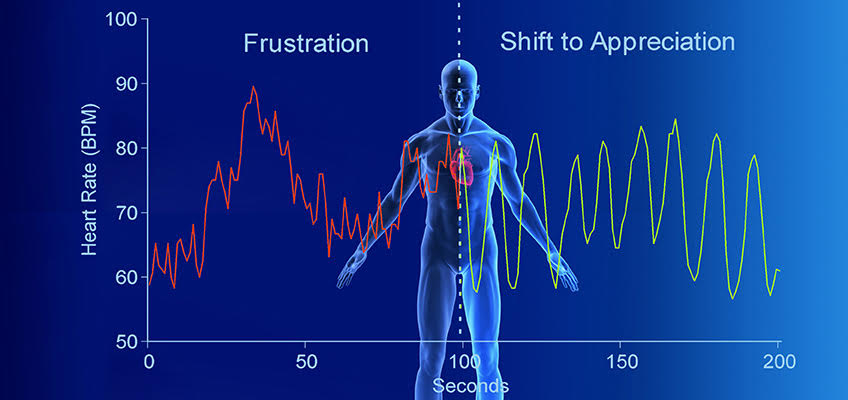 heartrate-chart
