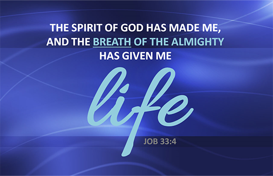 Breath of God Gives Life Job 33:4